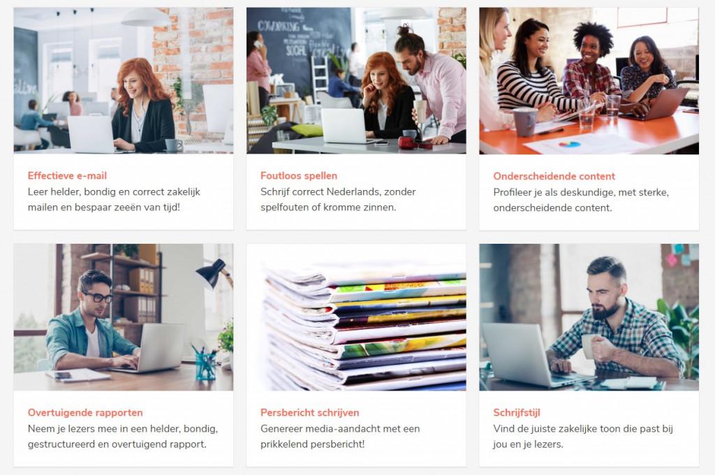 Schrijfcursus via Teams of Zoom